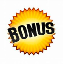 Bonus 100% up to 100€ plus 100 free spins at Playamo