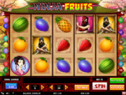 Play free Ninja Fruits slot by Play'n GO
