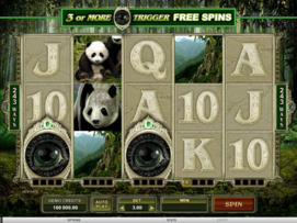 Play free Untamed Giant Panda slot by Microgaming