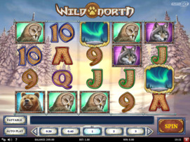 Play free Wild North slot by Play'n GO